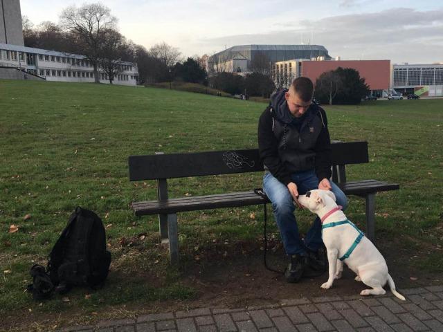 Training im Park - Hundeschule Rose in Wolfsburg